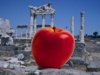 Что такое яблоко раздора