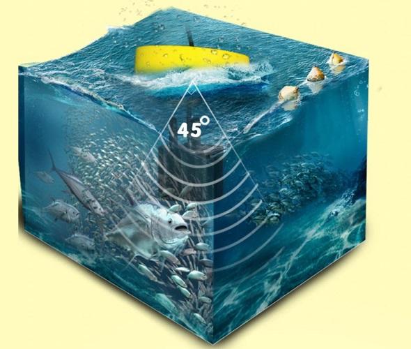 Часами измеряются время и глубина водоема - эхолот