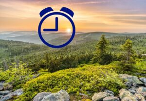 Биологические часы в природе и механизм биологических часов